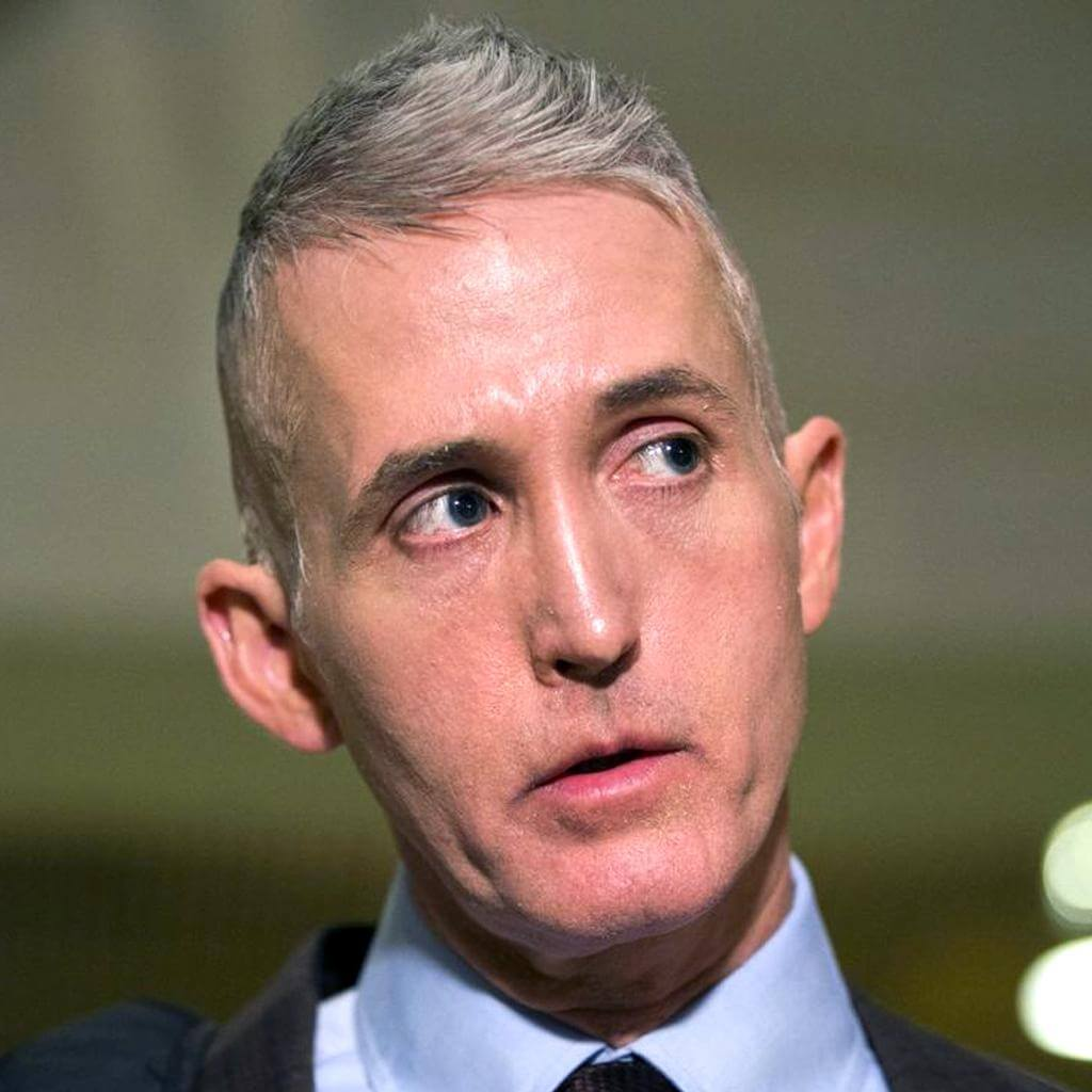 Trey Gowdy Republican Representative Of South Carolina