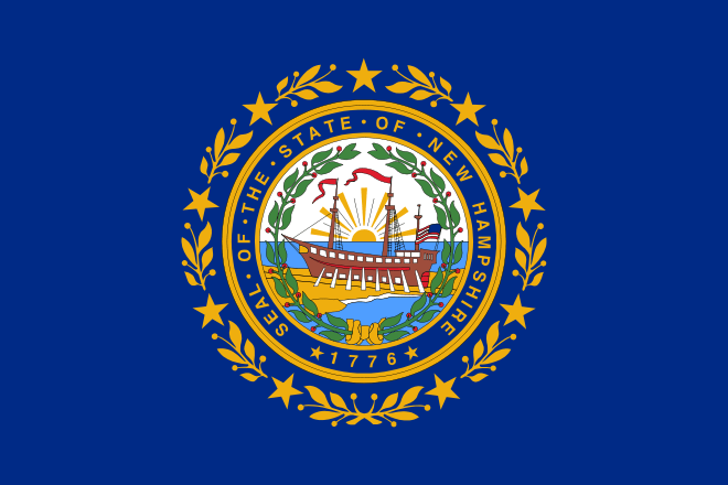 New Hampshire's State Flag Image
