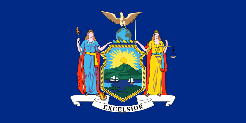 New York's State Flag Image